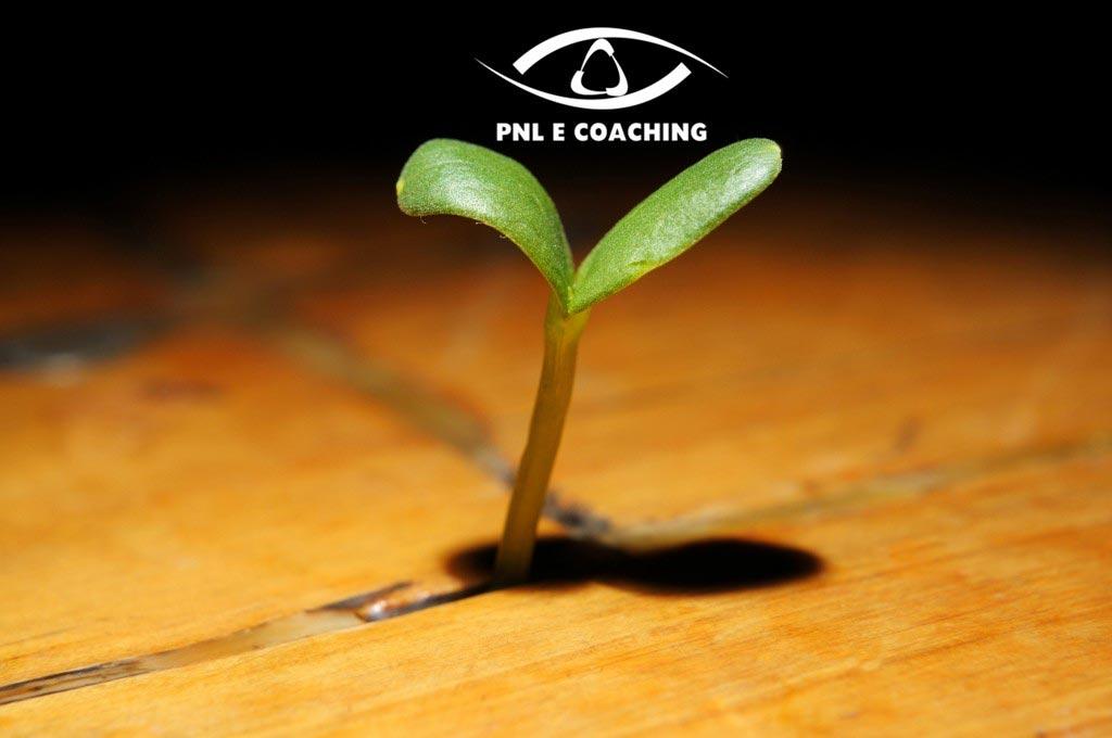 La resilienza è un atteggiamento da sviluppare