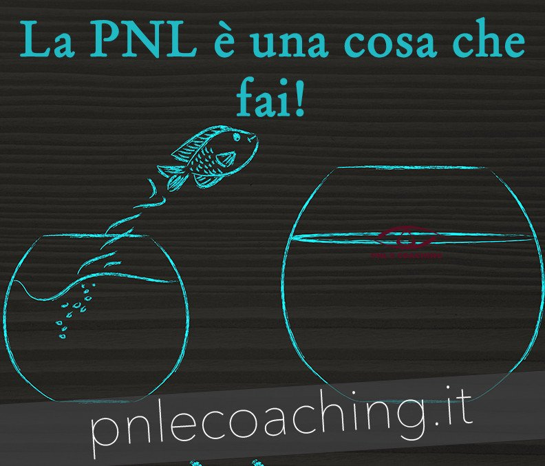 Cosa è la PNL