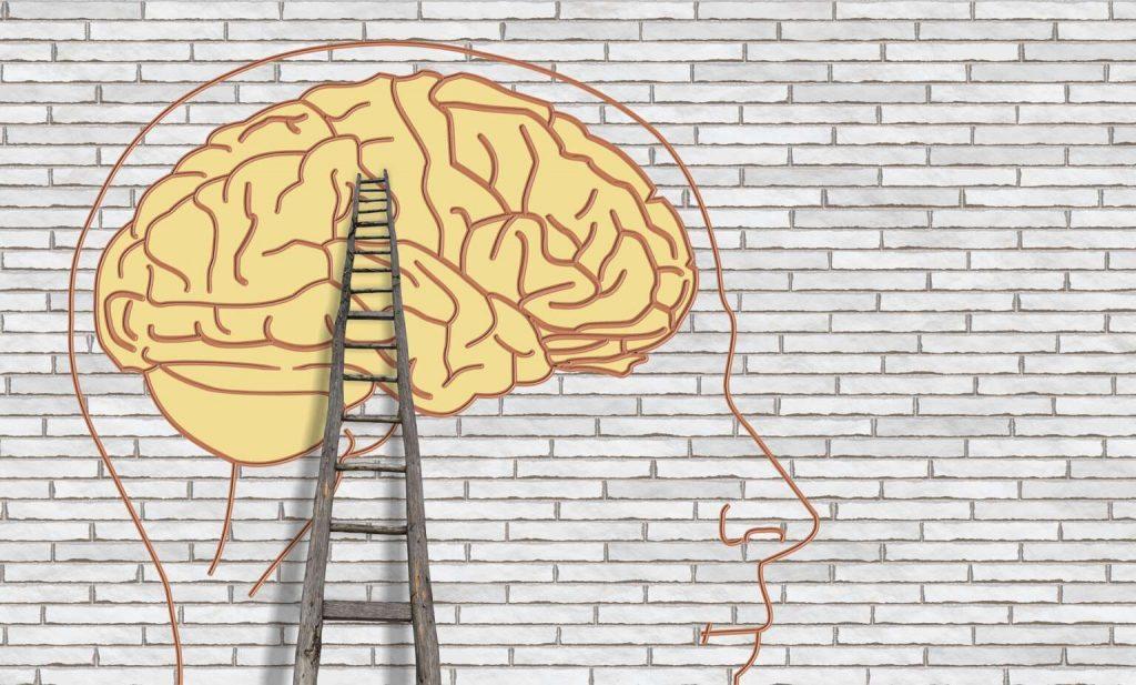 coaching principi delle neuroscienze