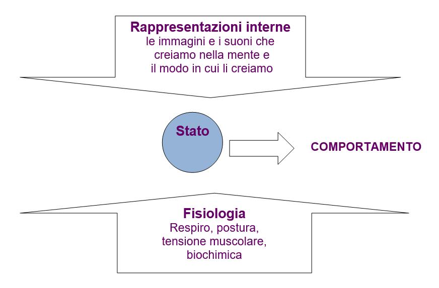 rappresentazioni interne stato e comportamento